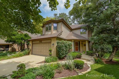 2117 Belleau Woods Court, Wheaton, IL 60189 - #: 10519735