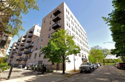 811 S Lytle Street UNIT 504, Chicago, IL 60607 - #: 10519828
