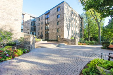 1005 Bonnie Brae Place UNIT 4E, River Forest, IL 60305 - #: 10520556