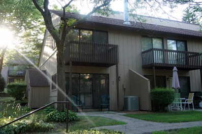 15 St Thomas Colony Street UNIT 3, Fox Lake, IL 60020 - #: 10520721