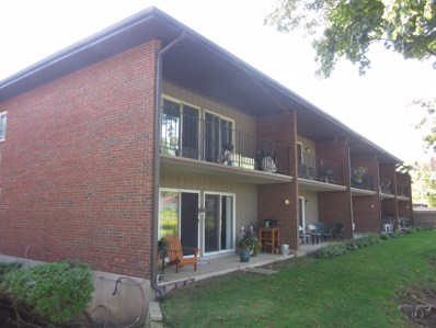 111 Jefferson Street UNIT J, Algonquin, IL 60102 - #: 10520753