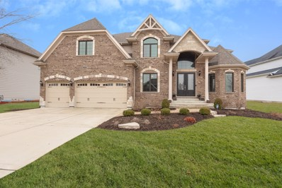 3124 Deering Bay Drive, Naperville, IL 60564 - #: 10521331