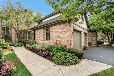 14559 Morningside Road, Orland Park, IL 60462 - #: 10522142