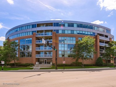 1228 Emerson Street UNIT 207, Evanston, IL 60201 - #: 10522825