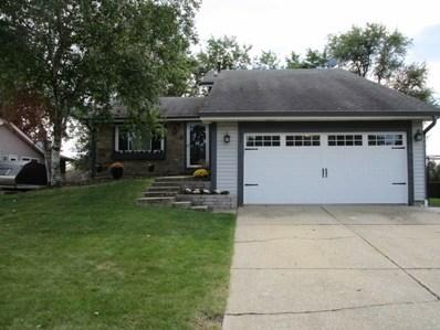 14602 Arboretum Drive, Homer Glen, IL 60441 - #: 10523264