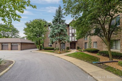 40 Harbor Court UNIT 304, Naperville, IL 60565 - #: 10524390