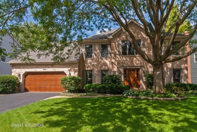925 Spindletree Avenue, Naperville, IL 60565 - #: 10524643