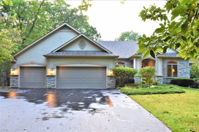 10619 Red Hawk Lane, Spring Grove, IL 60081 - #: 10524799