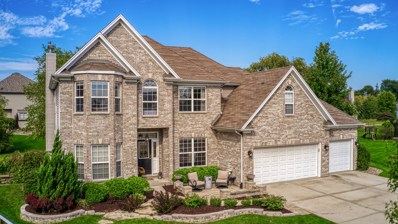 25726 Blakely Court, Plainfield, IL 60585 - #: 10524982