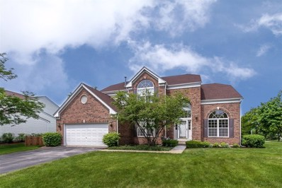 480 Cherry Hill Court, Schaumburg, IL 60193 - #: 10525023
