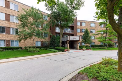 245 S Park Lane UNIT 301, Palatine, IL 60074 - #: 10525207