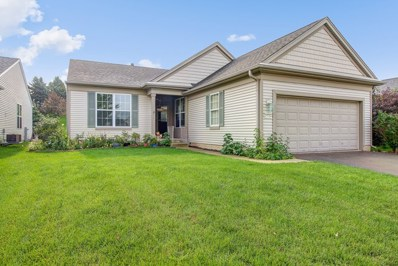 13714 Windy Prairie Court, Huntley, IL 60142 - #: 10525408