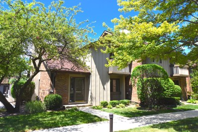 25 Kyle Court, Willowbrook, IL 60527 - #: 10526361