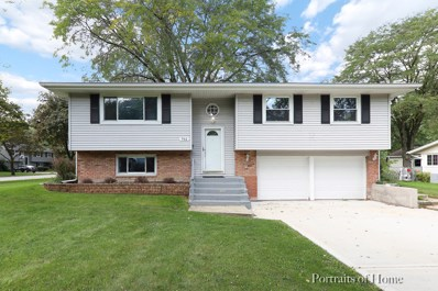 702 Dartmouth Lane, Schaumburg, IL 60193 - #: 10526881