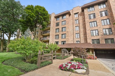 3810 Mission Hills Road UNIT 402, Northbrook, IL 60062 - #: 10526921