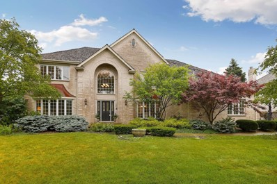 3211 Treyburn Road, Naperville, IL 60564 - #: 10527328