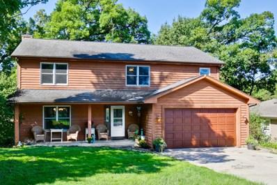 218 Meadow Lane, Oakwood Hills, IL 60013 - #: 10527666