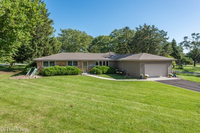 1124 86th Street, Downers Grove, IL 60516 - #: 10527946