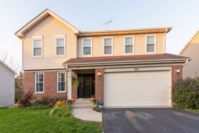 257 Fallbrook Court, East Dundee, IL 60118 - #: 10528362