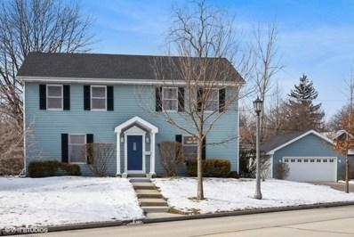 214 Bluff Avenue, La Grange, IL 60525 - #: 10530044
