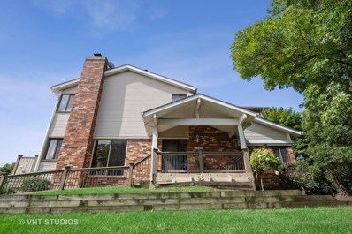 1011 Sussex Drive, Northbrook, IL 60062 - #: 10531429