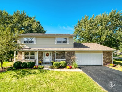 6S600  Meadowbrook, Naperville, IL 60540 - #: 10532739