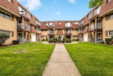 8542 W Catherine Avenue UNIT Q2E, Chicago, IL 60656 - #: 10533374