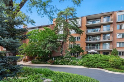 22 Park Lane UNIT 317, Park Ridge, IL 60068 - #: 10533439