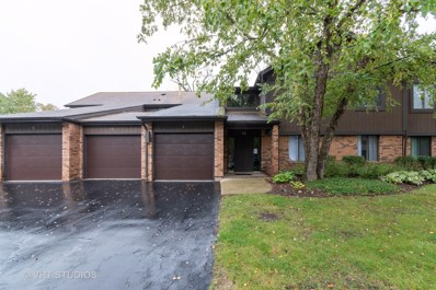 38 Creekside Circle UNIT C, Elgin, IL 60123 - #: 10534360