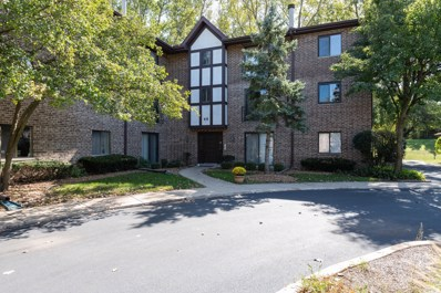 48 Harbor Court UNIT 312, Naperville, IL 60565 - #: 10535642