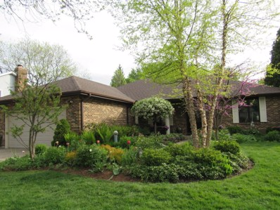 1705 Young Drive, Libertyville, IL 60048 - #: 10537585