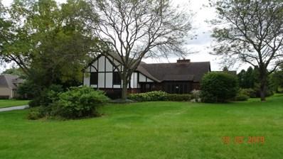 26921 W Stone Court, Ingleside, IL 60041 - #: 10537586