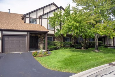 2261 Petworth Court UNIT 102B, Naperville, IL 60565 - #: 10537948