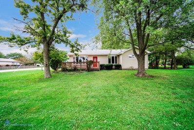 5105 W Main Street, Monee, IL 60449 - #: 10539447