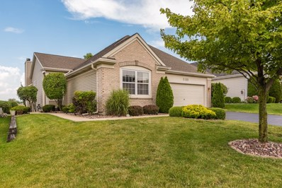 21322 W REDWOOD Drive, Plainfield, IL 60544 - #: 10539515