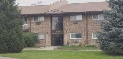 830 E Old Willow Road UNIT 205, Prospect Heights, IL 60070 - #: 10539722