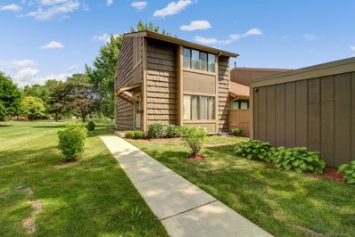 690 E Woodfield Trail, Roselle, IL 60172 - #: 10540245