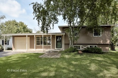 338 High Road, Cary, IL 60013 - #: 10540423