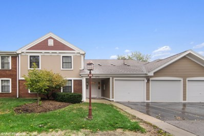 273 Elmwood Lane UNIT D2, Schaumburg, IL 60193 - #: 10540708
