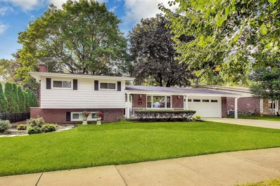 1407 W Grove Street, Arlington Heights, IL 60005 - #: 10540757
