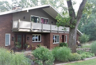 35W020  Chateau, Dundee, IL 60118 - #: 10541077