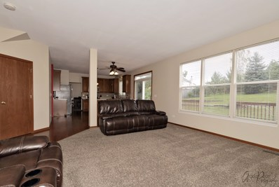 1734 Hoover Trail, McHenry, IL 60051 - #: 10541270
