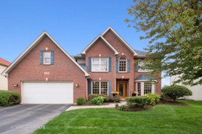 2748 Pennyroyal Circle, Naperville, IL 60564 - #: 10543609