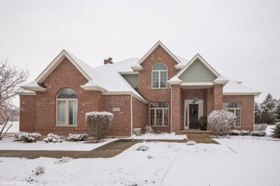 24550 Killarney Court, Naperville, IL 60564 - #: 10544135