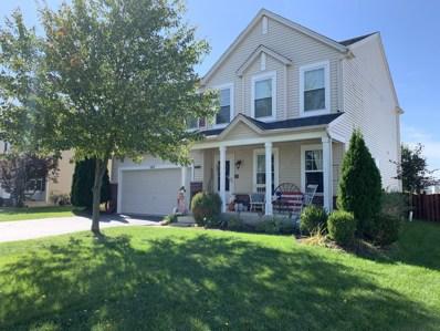 1817 Black Hill Ridge Drive, Plainfield, IL 60586 - #: 10545999