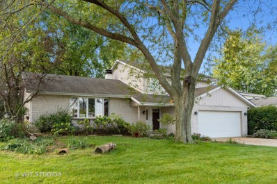 1125 Moorland Avenue, Shorewood, IL 60404 - MLS#: 10546059