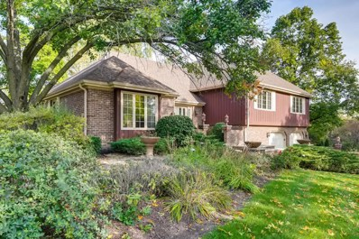 134 Saddle Brook Drive, Oak Brook, IL 60523 - #: 10546140