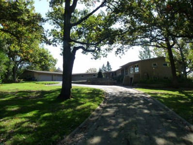 15 Old Creek Road, Palos Park, IL 60464 - #: 10546604