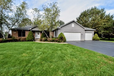 9117 Anthony Lane, Spring Grove, IL 60081 - #: 10546738