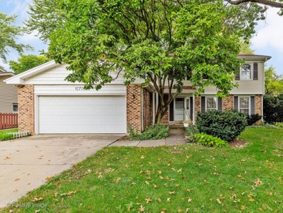 6710 Breckenridge Road, Lisle, IL 60532 - #: 10547788